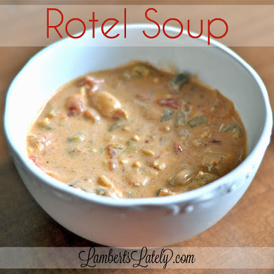 This Rotel Soup recipe is the easiest thing you'll ever make!  Absolutely delicious and perfect for fall/winter.
