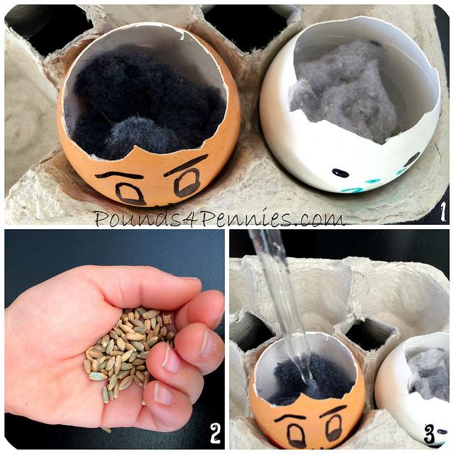 Making Eggshell Planters