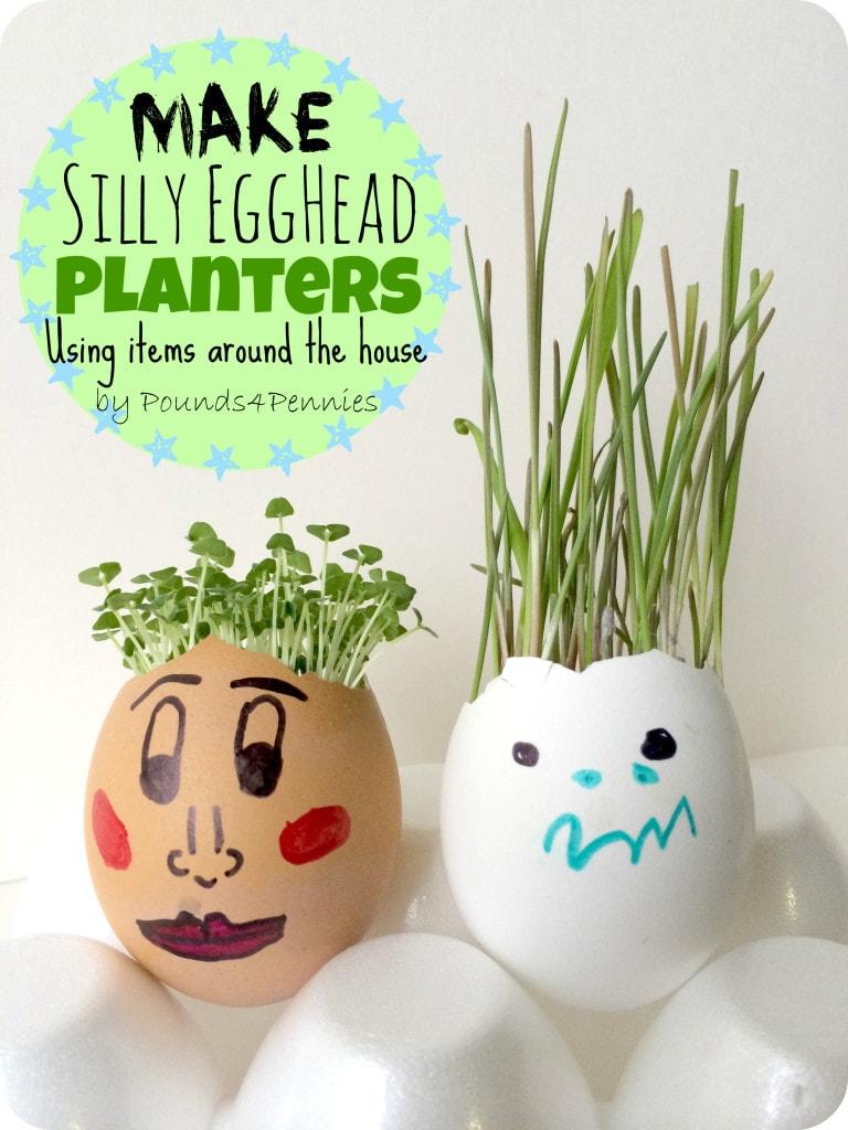 Eggshell Planter Silly Eggheads