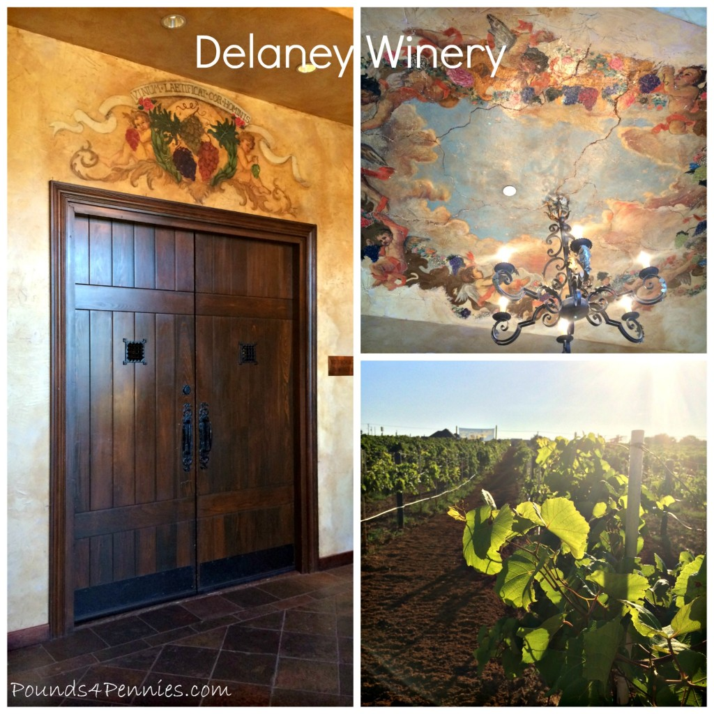Delaney Winery