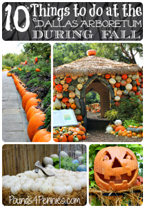 10 Things to do at the Dallas Arboretum This fall
