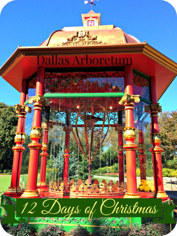 Creating New Holiday Traditions at the Dallas Arboretum | Mainly ...