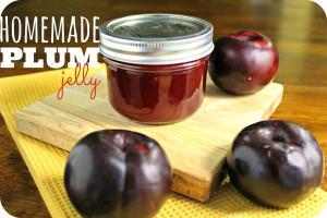 How to make Homemade Jelly Plum